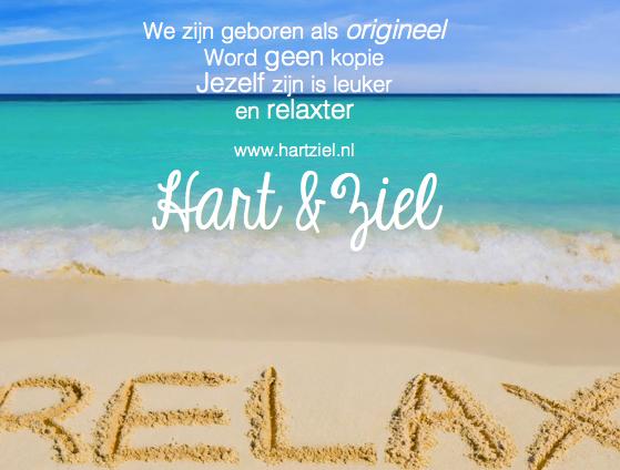Relax Zon Zee Strand Vakantie Geniet Origineel Leven