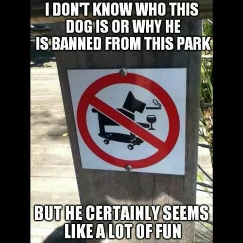 f678e2901c7b6e679c55cceeae86dd16 i don't know who this dog is or why he is banned from this park but