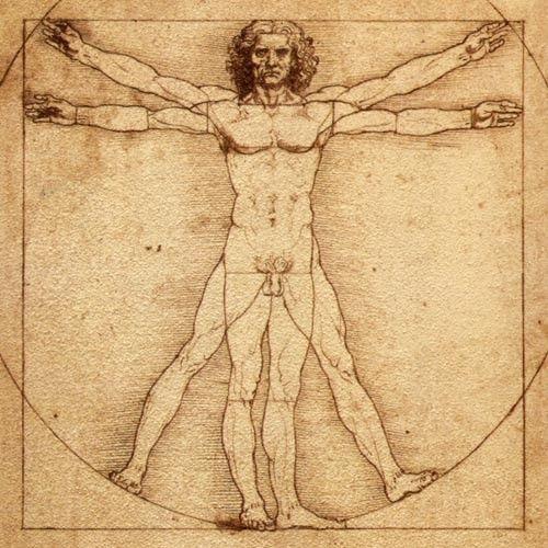El Hombre De Vitruvio De Leonardo Da Vinci Pudo Haber Muerto A Causa De Una Hernia El Hombre De Vitruvio Leonardo Da Vinci Arte Renacentista