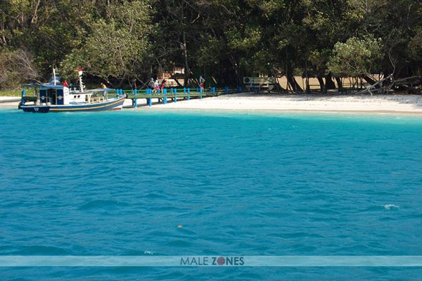 top 5 things to do in pulau peucang indonesia traveling