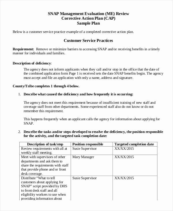 Corrective Action Plan Template Healthcare New Action Plan