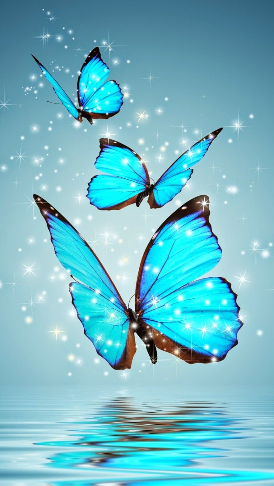 Pin By Anne Maltais On Cats Butterfly Wallpaper Butterfly Blue