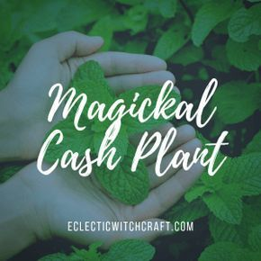 12 Money Spells That Work: Attract Wealth With Witchcraft #moneyspell 12 Money Spells That Work: Attract Wealth With Witchcraft #moneyspells 12 Money Spells That Work: Attract Wealth With Witchcraft #moneyspell 12 Money Spells That Work: Attract Wealth With Witchcraft #moneyspell