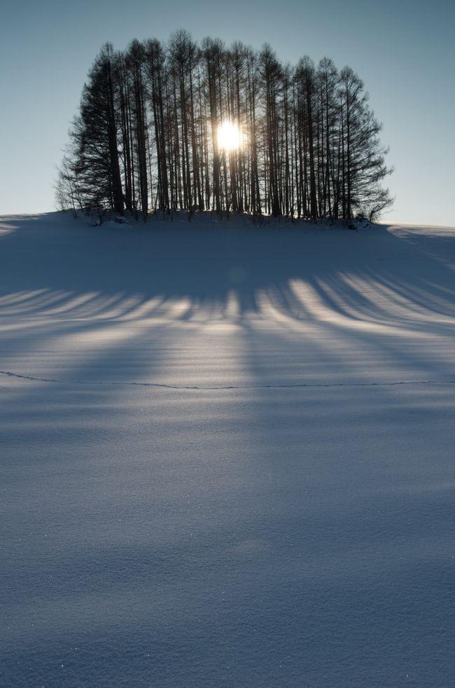 『冬の美瑛:煌めくサンピラー』美瑛(びえい)(北海道)の旅行記・ブログ by hirootaniさん【フォートラベル】