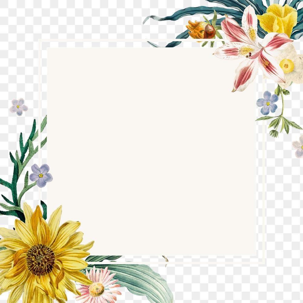 Summer Floral Border Png Frame Free Image By Rawpixel Com Sasi Floral Border Floral Border Design Flower Border