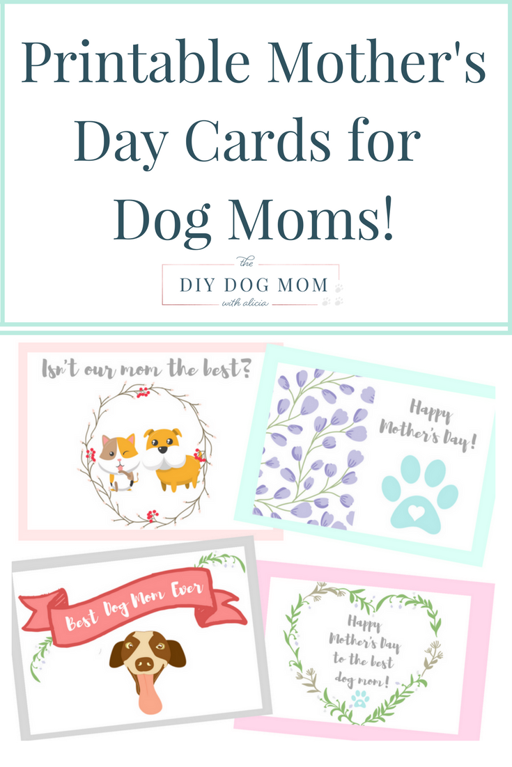 Day Cards For Dog Moms