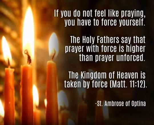 st ambrose quotes
