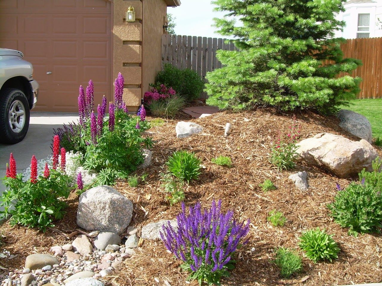 Xeriscape Photo Gallery   ... and Walkways Retaining Walls Synthetic Turf Xeriscape Water Features