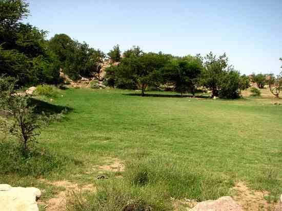 دليل لايفوتك منتزه عسير الوطني من المننزهات الطبيعية المميزة في المملكة يغطي مساحة 455 الف فدان وهو أول محمية طبيعية Outdoor Country Roads Outdoor Decor