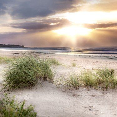 strand in nieblum auf föhr im sonnenuntergang, © föhr tourismus gmbh | scandinavian dream in