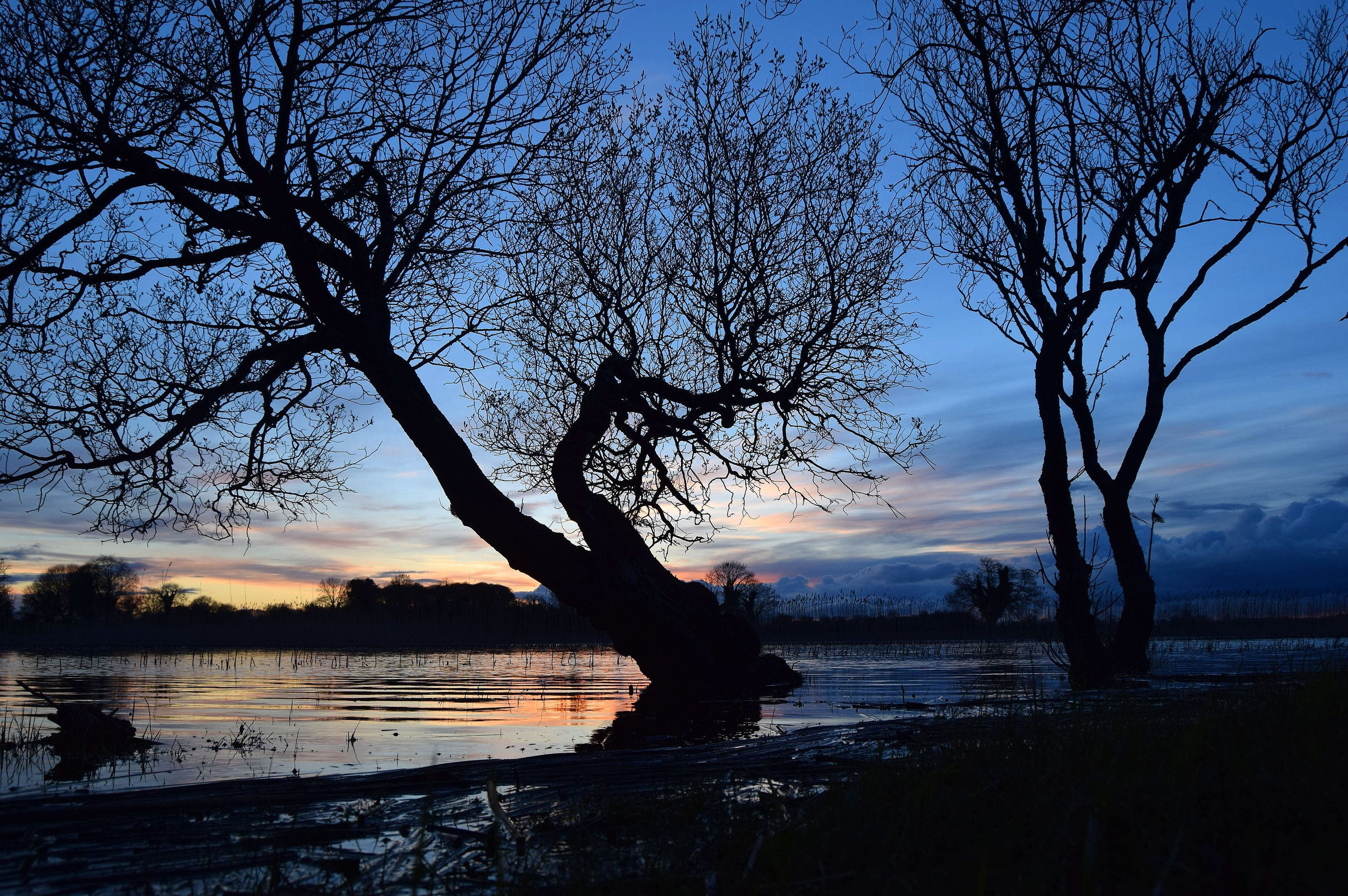 Sun setting on lough Ree foto by Bob Fox