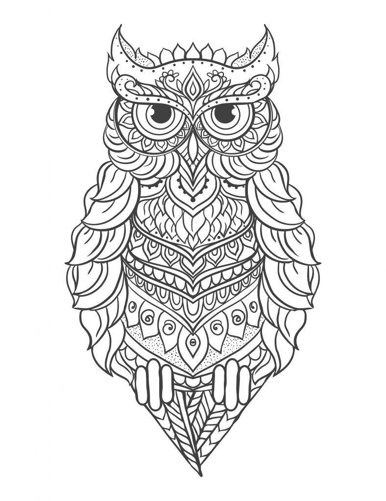 Mandalas De Buhos Debuda Net Buho Dibujo Mandalas Animales Y