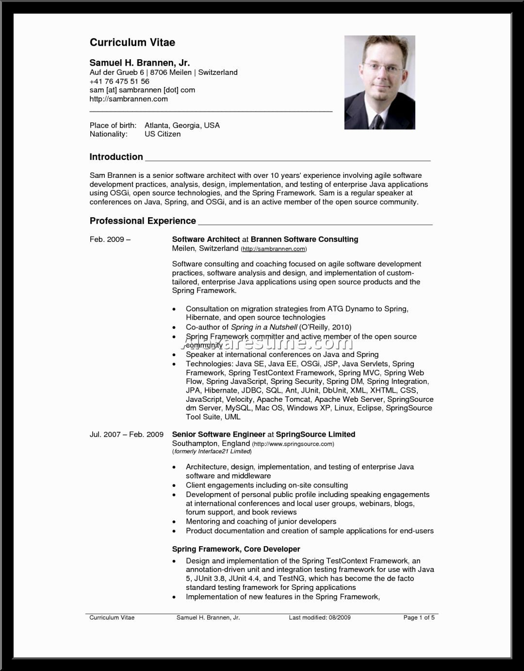 amazing resume headline examples for software engineer ideas