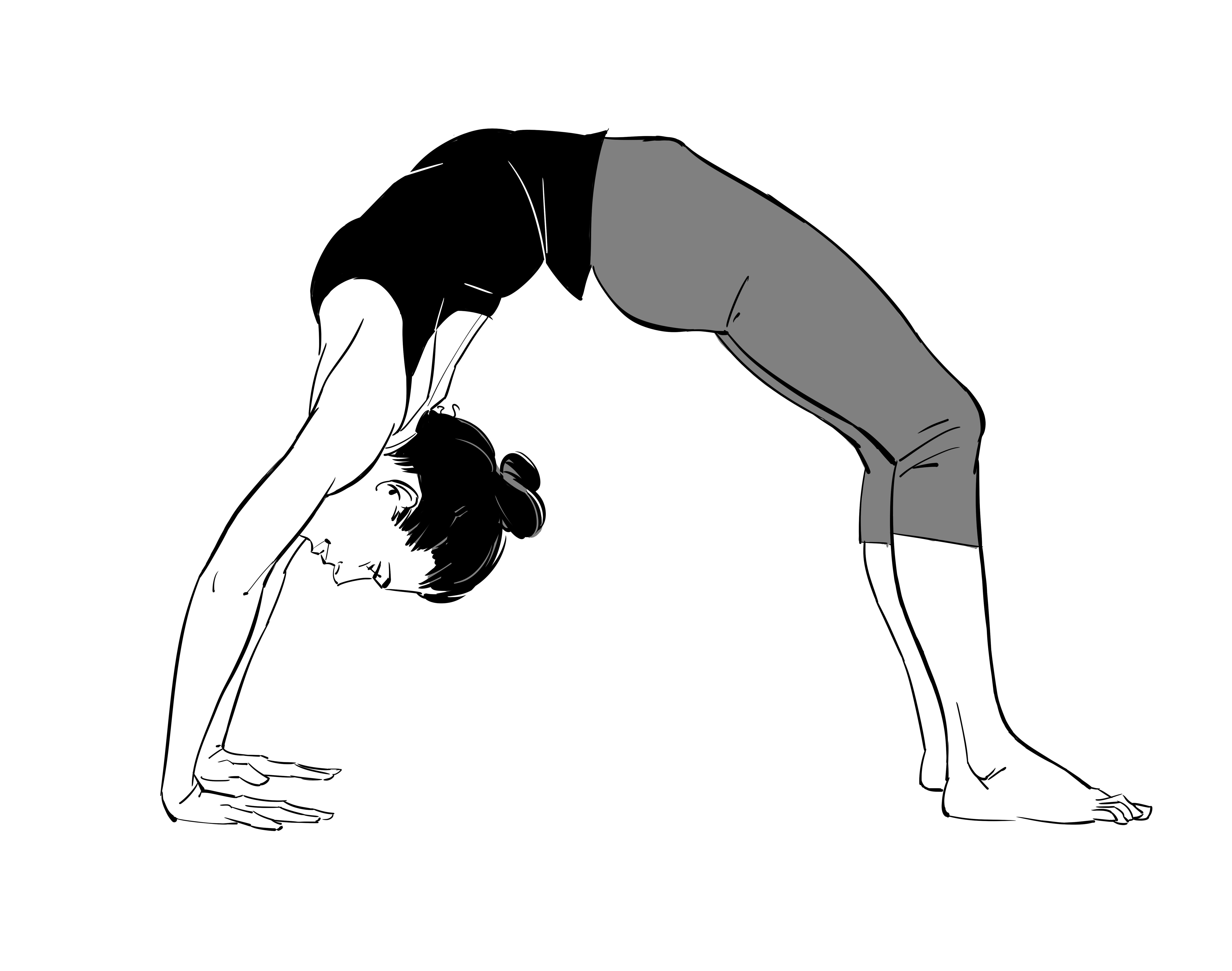Wheel pose yoga images yoga images yoga pencil drawing images