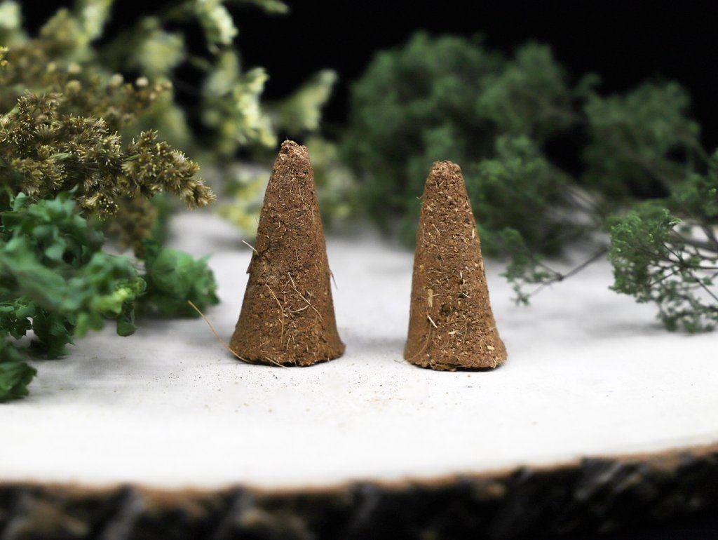 Palo santo cinnamon incense cones 2pk in 2020 incense