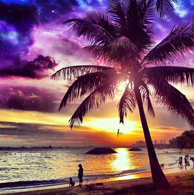 Gorgeous picture- tropical sunset with the night stars ...