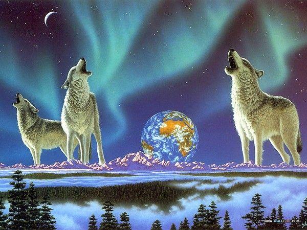 si jolies images animalières