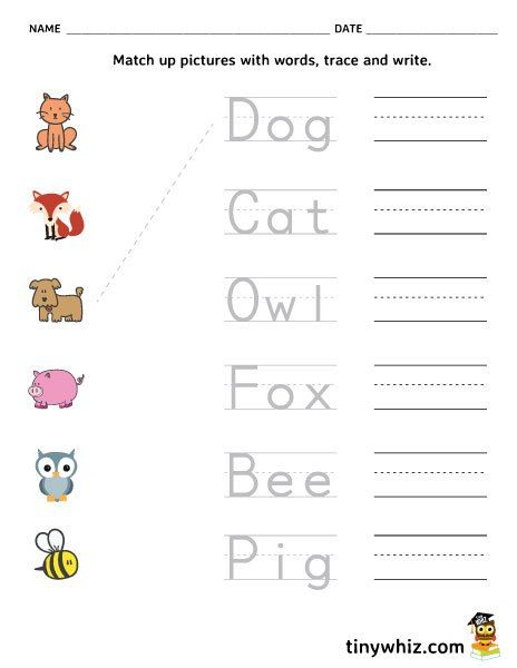 Free Printable Spelling Worksheet Match Trace Write Words