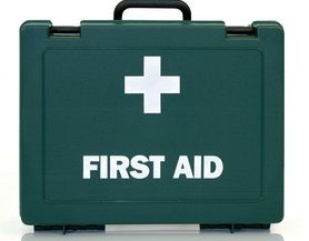 Ask The Vet Are You Prepared First Aid First Aid Kit Aid Kit