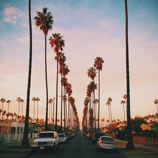 South Central, Los Angeles, Instagram by __sabin__ | Los angeles ...