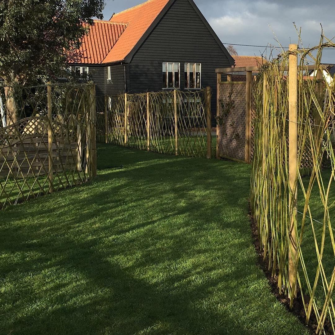 "Tim Holder on Instagram: ""Latest #garden experiment! # ..."