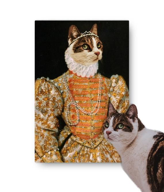 Renaissance Personalised Pet Canvas Queen Elizabeth I Cat Dog Hamster Puppy Kitten Gift For Birthdays Celebrations - Products -   #Birthdays #Canvas #Cat #Celebrations #Dog #Elizabeth #Gift #Hamster #kitten #Personalised #Pet #Products #Puppy #Queen #Renaissance