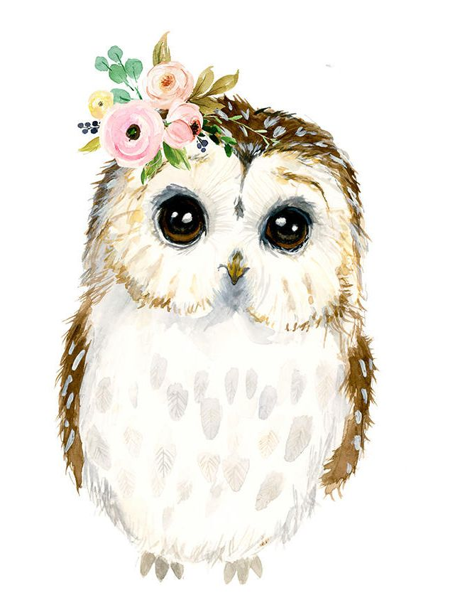 Watercolor baby owl, Owlet painting, Woodland Nursery