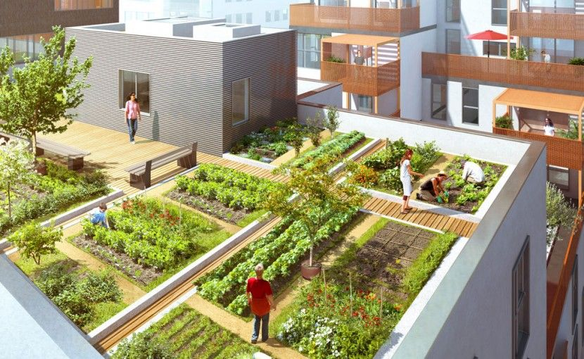 Potager sur le toit d 39 un immeuble de logements dino for Jardin urbain green bar