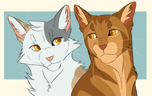 the best parents in thunderclan | Sorreltail and Brackenfur