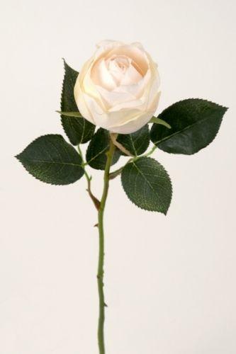 Hvit+rose+50+cm,+kraftigere+type.