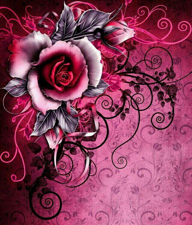 Fleur Noire Fuschia Belles Images De Fleurs Fond D Ecran Telephone Fleurs