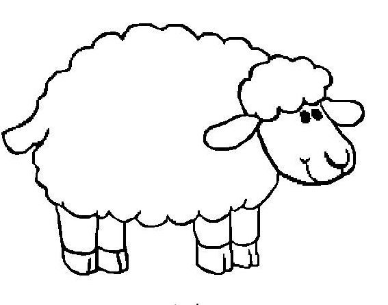 Small Sheep Attractive Coloring Pages For Kids Printable
