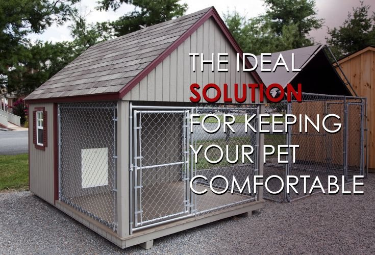 Keep Your Pooch Comfortable With Our Climate Control Systems More
