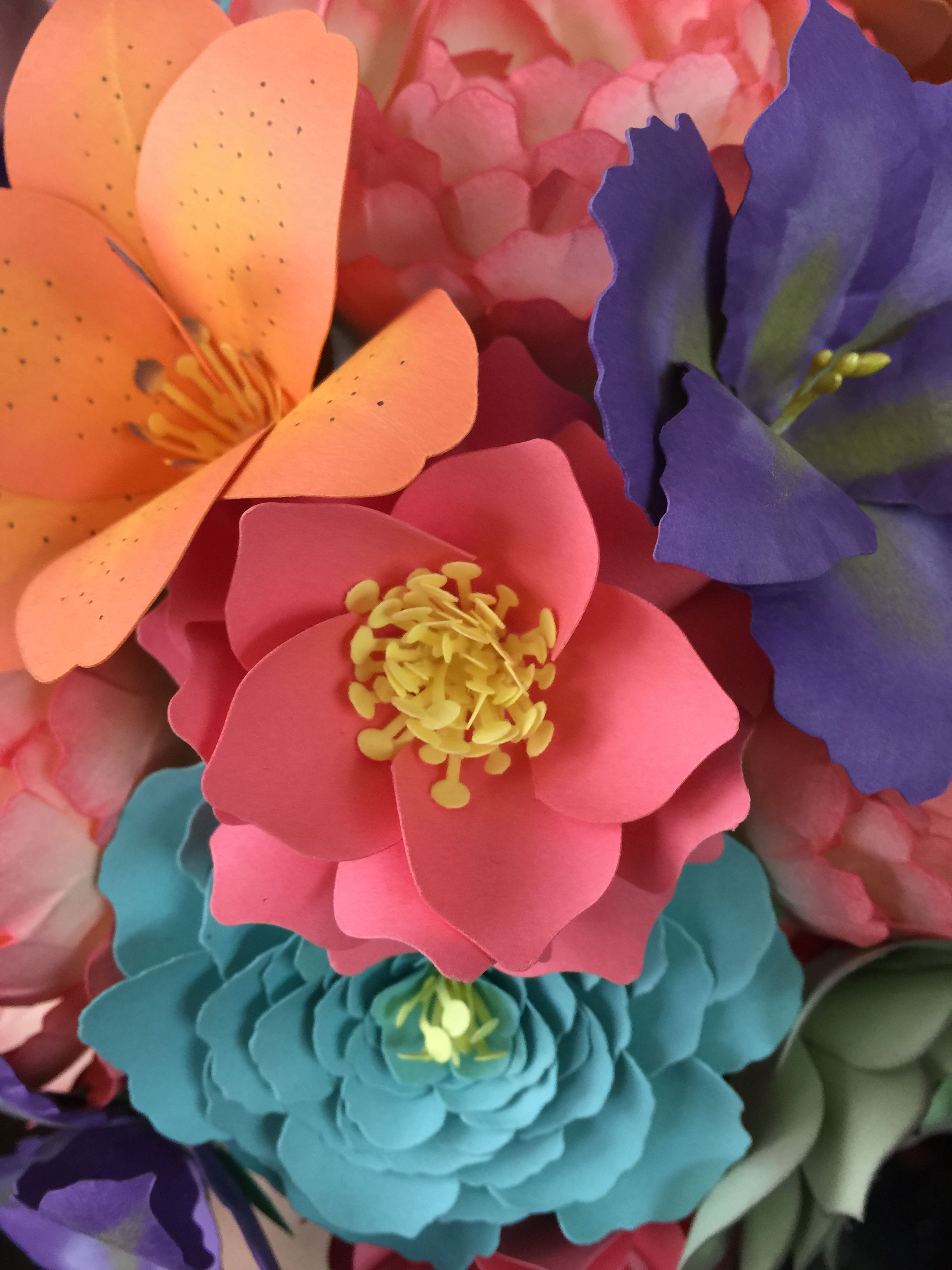 Diy Paper Flowers Video Tutorial Silhouette Cameo Pinterest