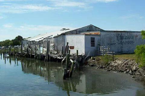 Fazio Seafood & docks