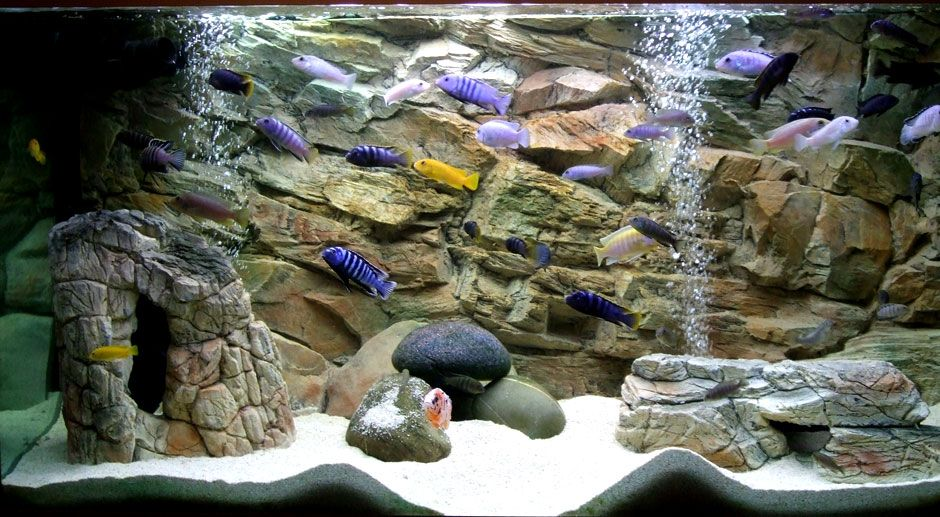 Artificial rocks empty inside and 3d rock background www for Aquarium decoration rocks