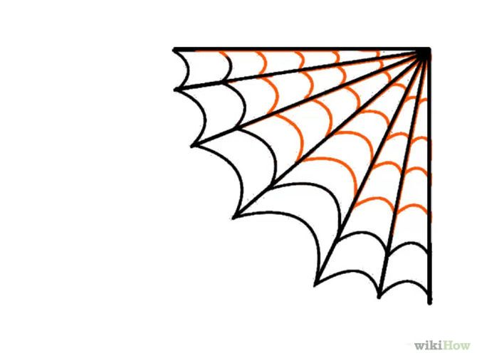 Draw a spider web spider webs and spider for Easy drawing websites