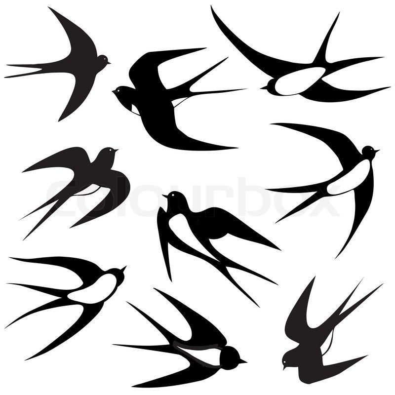 Bird Swallow Set Vector Illustration Poses Isolated On White Vector Colourbox Bird Silhouette Bird Silhouette Tattoos Silhouette Tattoos