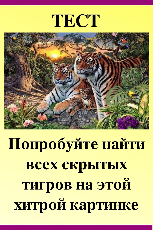 одном интервью сколько тигров на картинке загадка требовательным хозяйкам