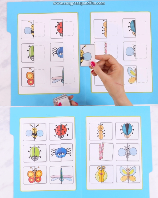 Printable Bugs Matching File Folder Game #insects