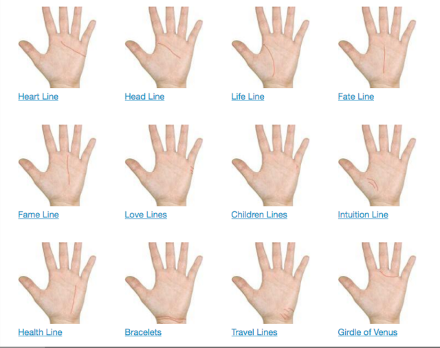 Palmistry Heart Lines - Life Line, Love Lines, Fate Line, and More ...