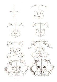 Katzen Zeichnen Schritt Fur Schritt Anleitung Dekoking 3 Katze