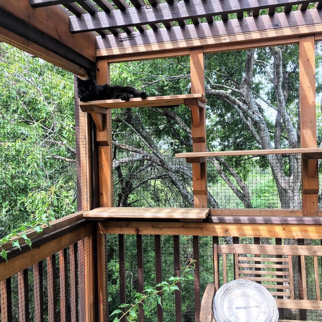 Catios How to Build an Indoor Patio for Your Cat Catio
