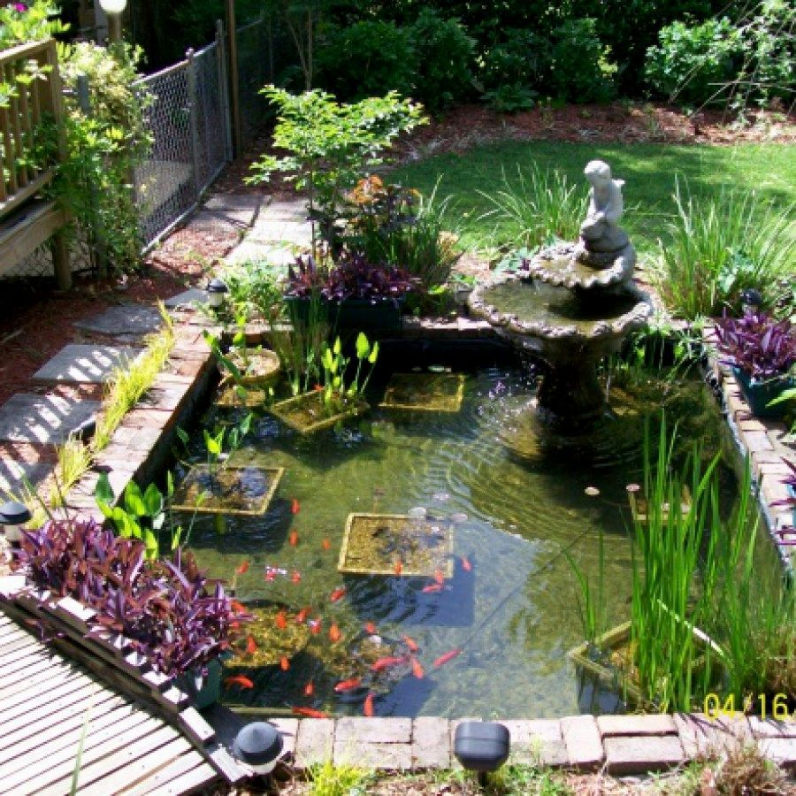 50 Awesome Koi Pond Ideas You Can Build To Complete Your