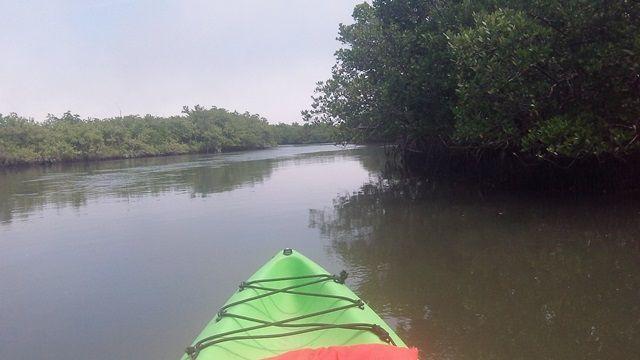 Callalisa Creek New Smyrna Beach Paddle Kayak Canoe