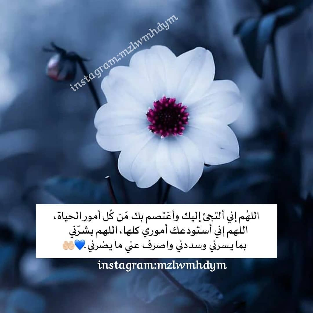 Pin By Nd On Allah Positive Notes Arabic Quotes Instagram