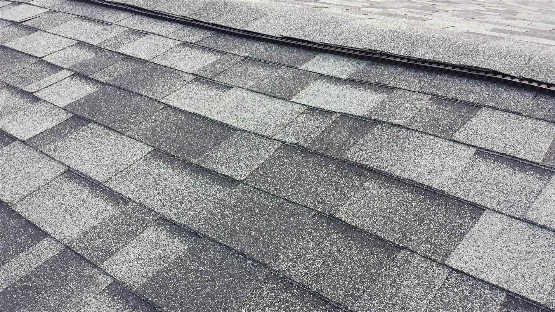 Best Quality Roof Shingles Roofing Companies Roof Design Roofing Services