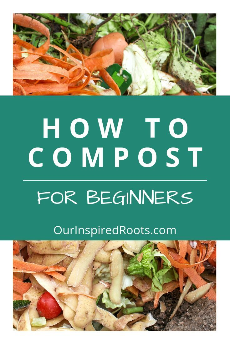 How to Compost 5 Ways to Get Black Gold For Your Garden is part of Composting at home, Gardening tips, Gardening for beginners, Compost, Garden, Potting soil - Wondering how to compost  It's pretty simple once you learn a few key tips for turning your kitchen scraps into plant food  Find out how easy it is!
