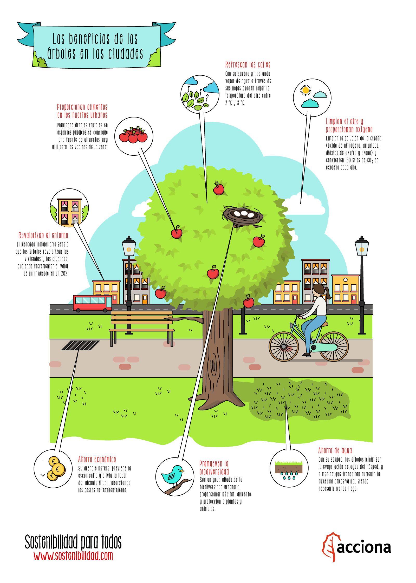 8 beneficios que proporciona el agua