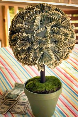 Plays with needles the money tree ideas pinterest money trees plays with needles the money tree negle Choice Image